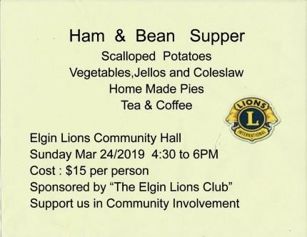 thumbnail_Elgin Lions Club 2002 Inc Ins doc. pg 1